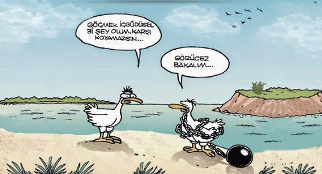 goc_karikatur